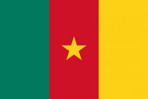 Flag cm